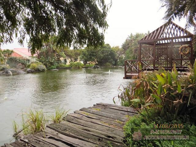 Kio Pond